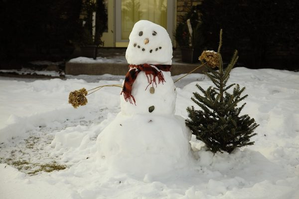A snowman next to a small tree