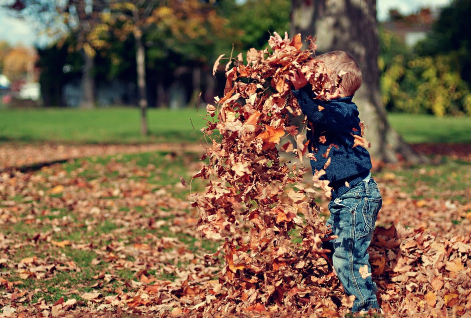 A little boy throwing a pile of leaves in the air outside